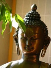 Buddha Benjamin